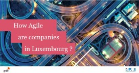 How agile are companies in Luxembourg PwC PMI 3
